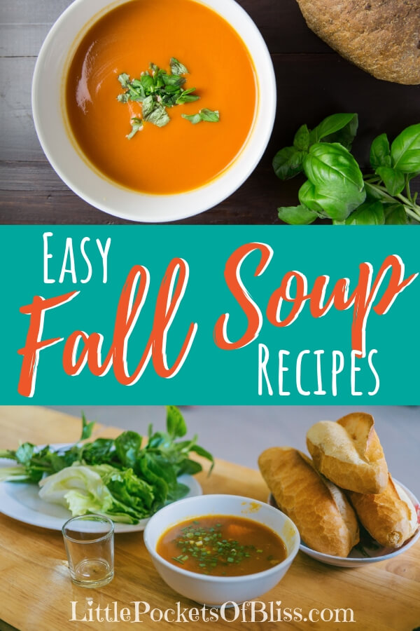 Fall just begs for warm, comforting soups.  But it has to be quick, simple, with few ingredients, and great flavours. Check out these Easy Fall Soup Recipes! #fallsouprecipes #easysouprecipes #soupforthesoul